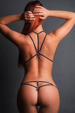 Harness Set Alphadriny