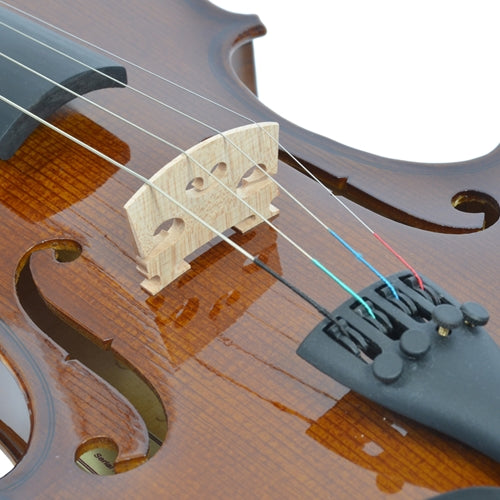 Forenza Beginner Violin Package