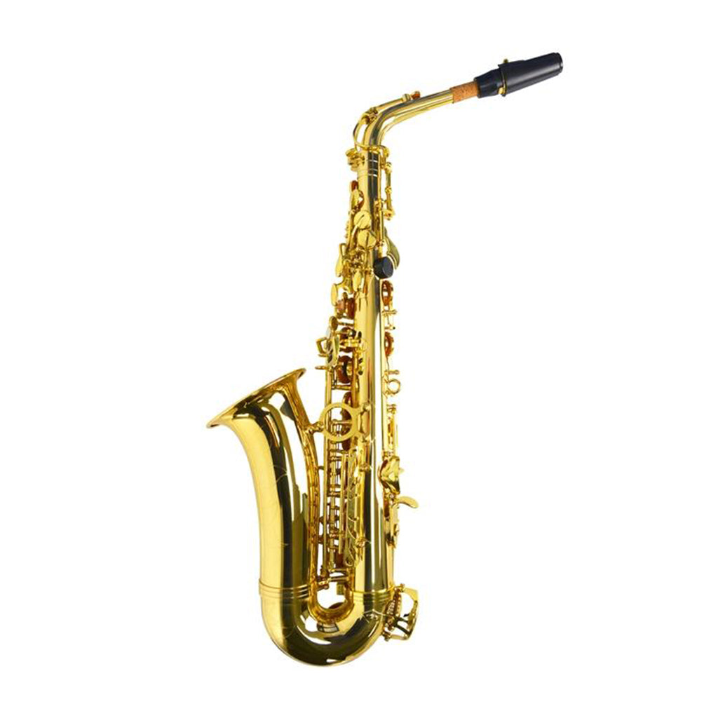 Sonata Beginner Saxophone Package