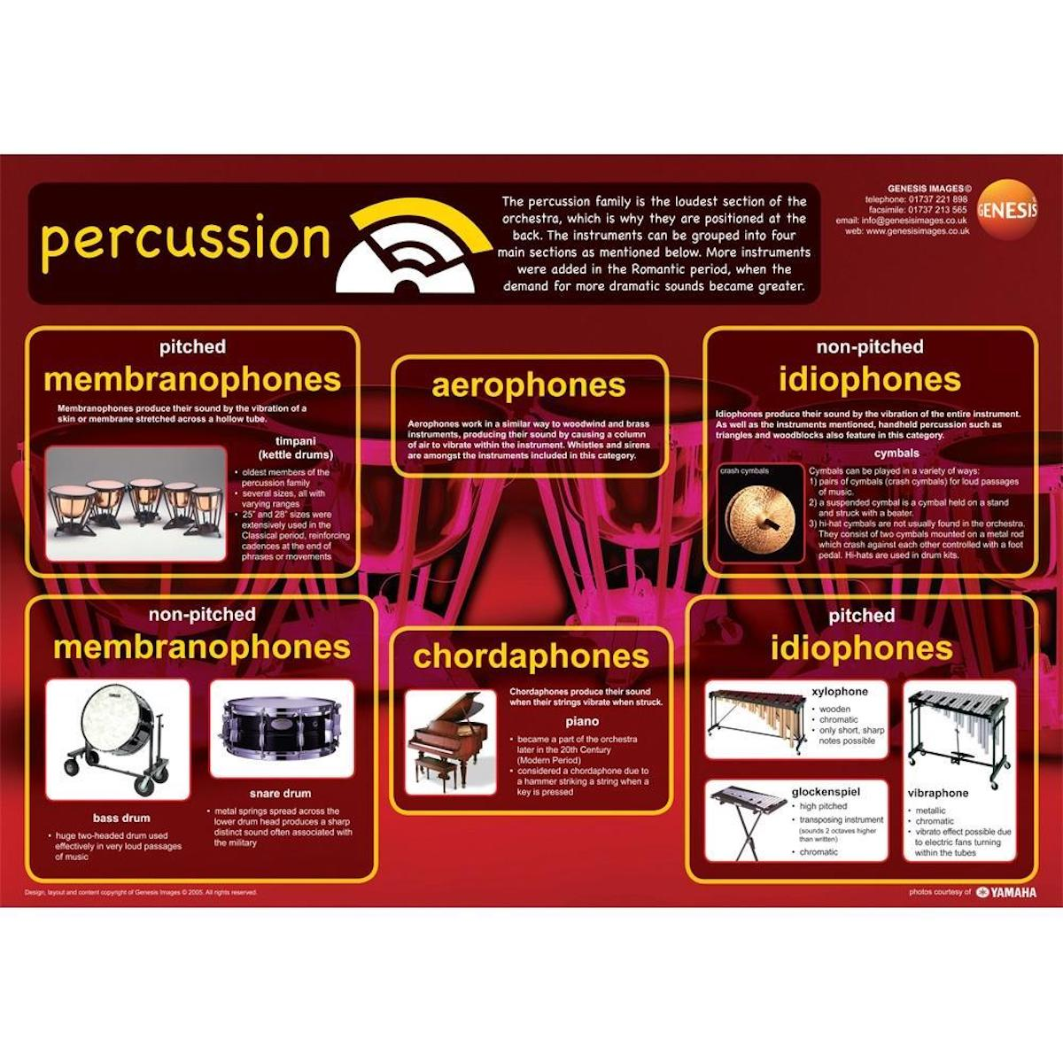 Percussion Instruments - A1 wall poster