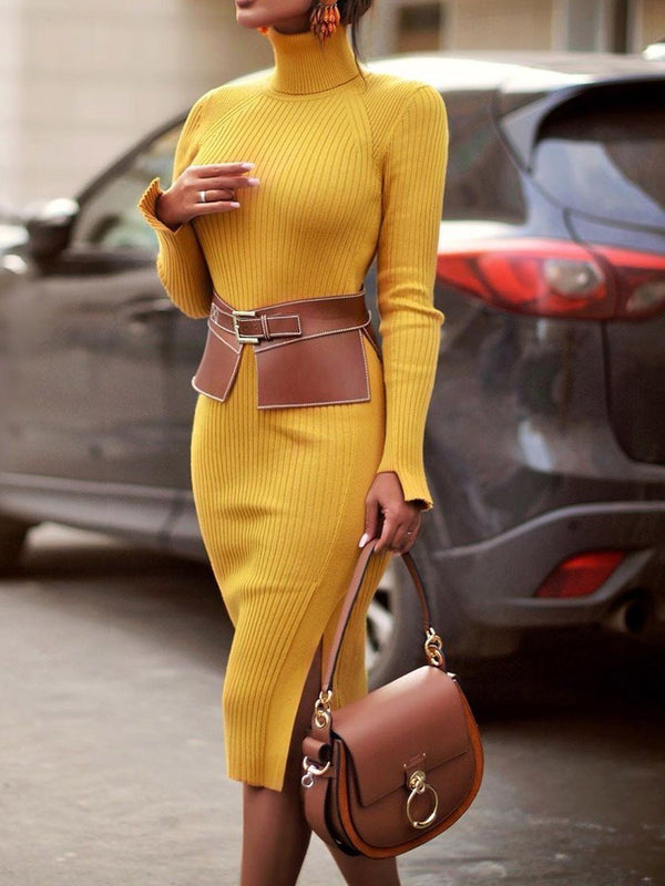 Mid-Calf Long Sleeve Turtleneck Sheath Regular Dress