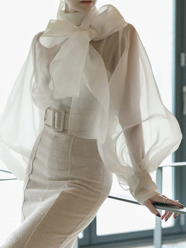 Bowknot Lantern Sleeve Plain Standard Long Sleeve Blouse