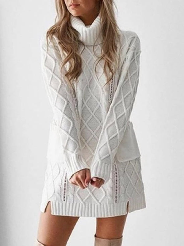Turtleneck Long Sleeve Above Knee Straight Casual Dress