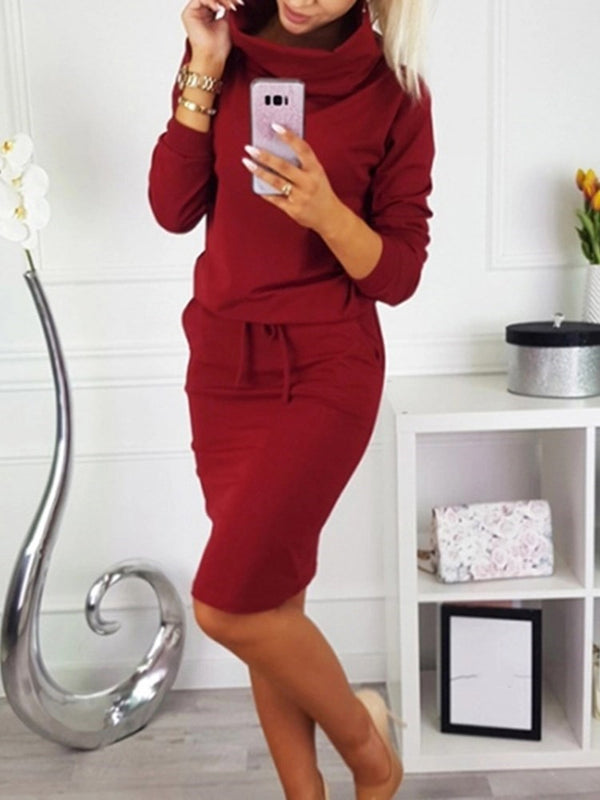 Nine Points Sleeve Turtleneck Knee-Length Pullover Plain Dress