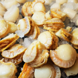 Boiled Hotate (Scallops)/熟带子 - Fish-Girl.com