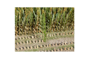 JL23288 Juweela Maize Plants Green 50 pcs