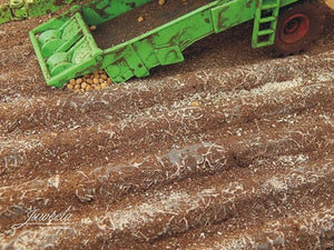 JL23385 Juweela Potato Field Sections 16 Pcs (total 60cm)