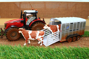 8608 SIKU MUDDY MASSEY FERGUSON TRACTOR WITH IFOR WILLIAMS STOCK TRAILER AND 2 COWS