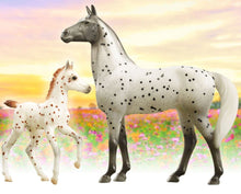 Load image into Gallery viewer, BR62207 SPOTTED WONDERS KNABSTRUPPER MARE AND FOAL FREEDOM SERIES