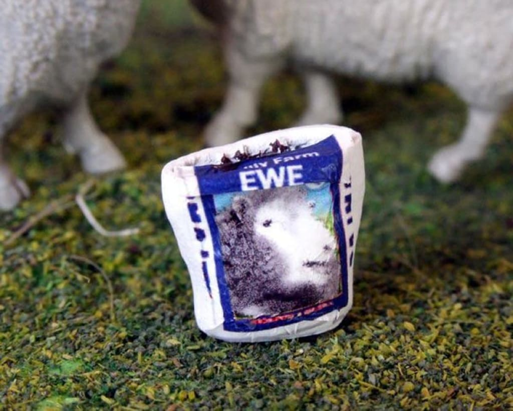 HLT-WM043H Open Sack of Ewe Nuts