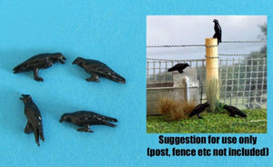 HLT-WMA17 Pack of Four Crows