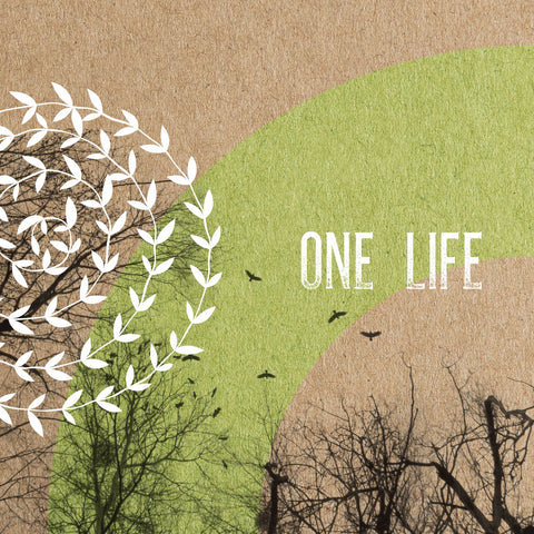 An image of One Life - Digital Album