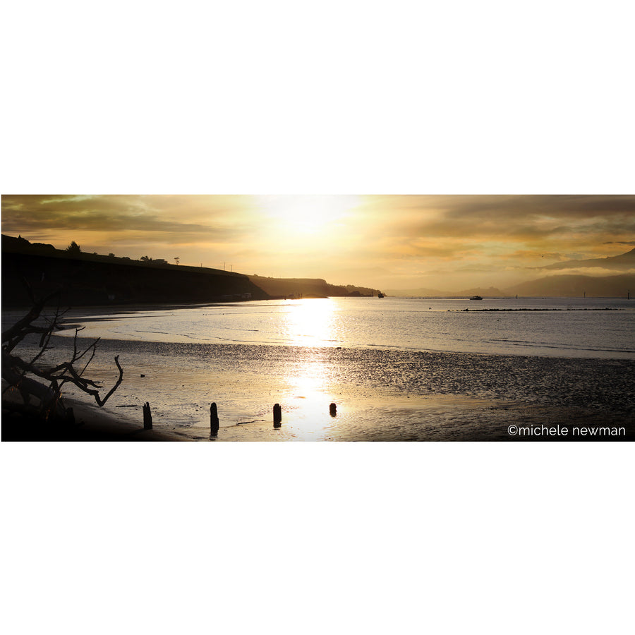 photo harrington point at sunset, otago peninsula, harbour, dunedin, new zealand