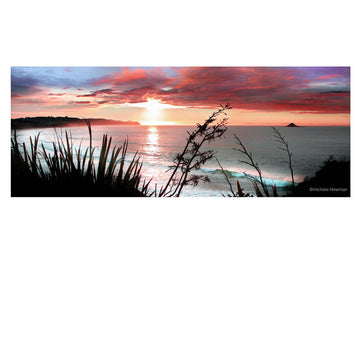 ocean view sunrise with flax, brighton, dunedin, new zealand