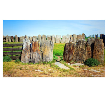 photo of old stone sheep yards middlemarch otago new zealand