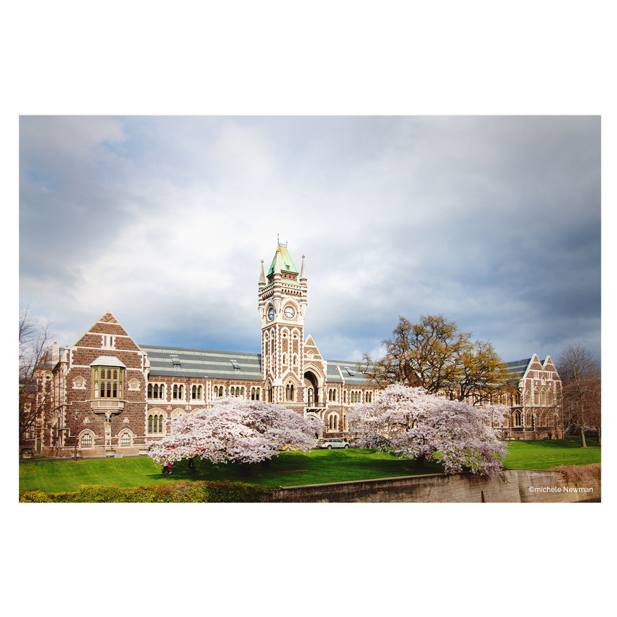 Otago university registry clock tower building dunedin new zealand