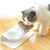 Elevated 15° Tilted Cat Bowl With Stand Non-Skid