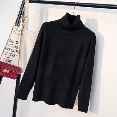 Thick Turtleneck Knit Sweater