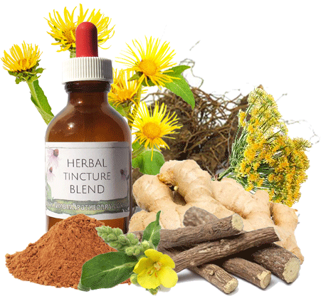 Bronchial Mix - Herbal Extract