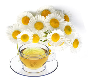 Nimbin apothecary sells organic chamomile flowers online, to help digestion and relaxation.