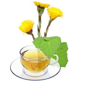Nimbin apothecary sells coltsfoot leaf online, good for the lungs