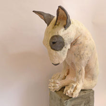 Load image into Gallery viewer, Ceramic bullie on a box
