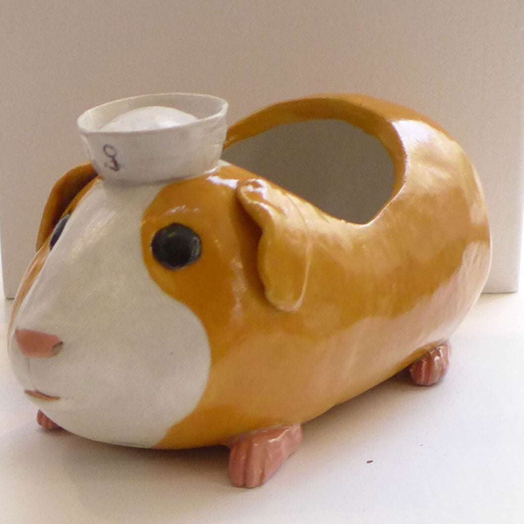 Jerry Guinea Pig Planter