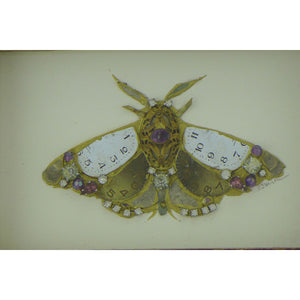 Purple and gold moth