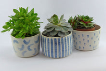 Load image into Gallery viewer, Plant pot wave