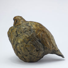 Load image into Gallery viewer, Partridge female