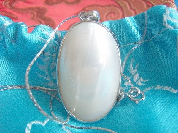 Stunning Sea Shell Pendant with Sterling Silver Necklace