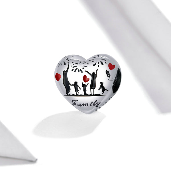 Sterling 925 silver charm the family fits Pandora charm and European charm bracelet