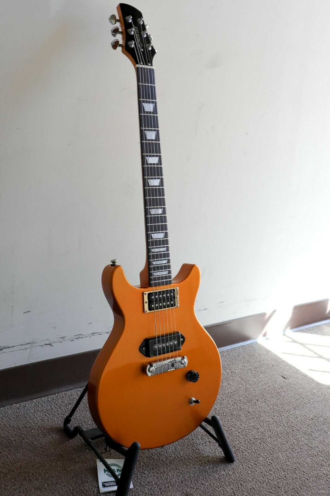 Allen Eden Southbound Junior with Dual Pickups and Hardshell Case