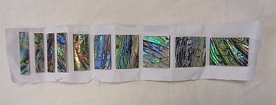 Set of 10 Real Abalone Pre-cut Block Inlays for Custom Guitar