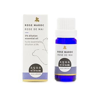 Rose Moroc Absolute 5% Essential Oil