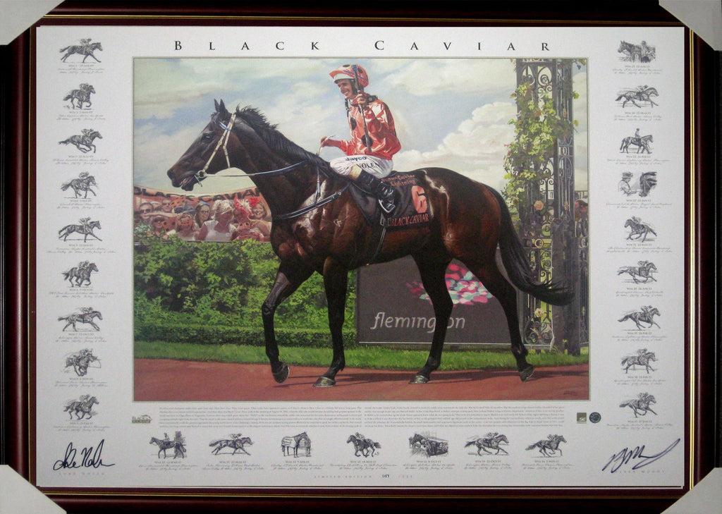 Horse Racing - Black Caviar Fine Art Print - Signed & Framed Limited Edition