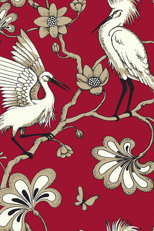 Egrets Wallpaper - Red