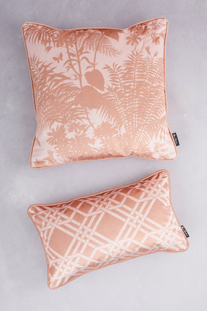 Duet of Velvet Cushions - Blush & Gold
