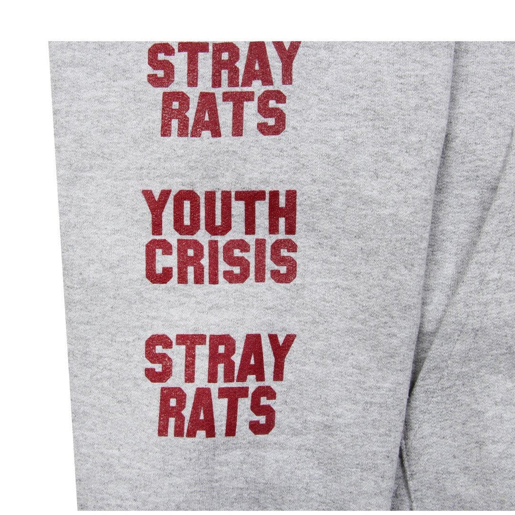 Stray Rats YOUTH CRISIS HOODIE Grey