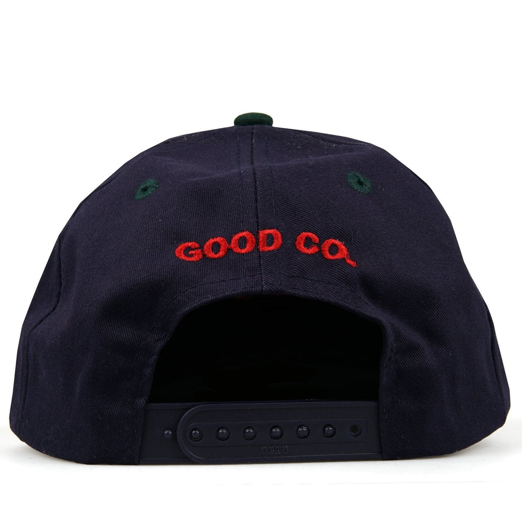 The Good Company CHILL WAVE SNAPBACK Blue/Green/Red