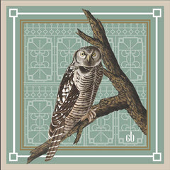 Night Owl Silk Pocket Square