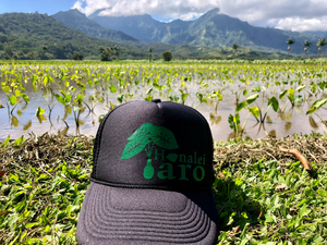 Hanalei Taro Trucker Hat Dark Green/Black