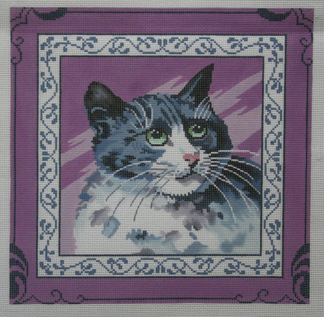 Cat on Purple