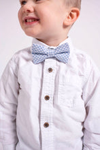 Load image into Gallery viewer, Basket Blue Bow Tie