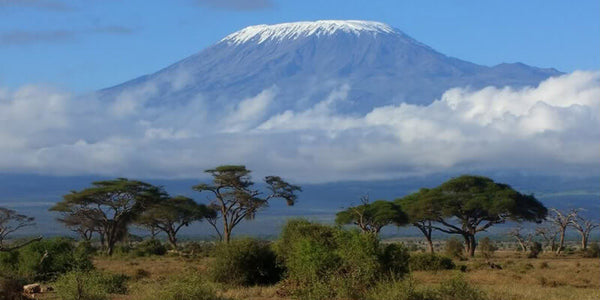 Top 10 Holiday Destinations for avid traveller - Arusha, Tanzania
