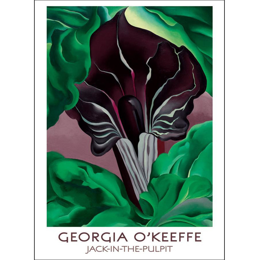Georgia O'Keeffe Jack-in-the-Pulpit Note Card Set