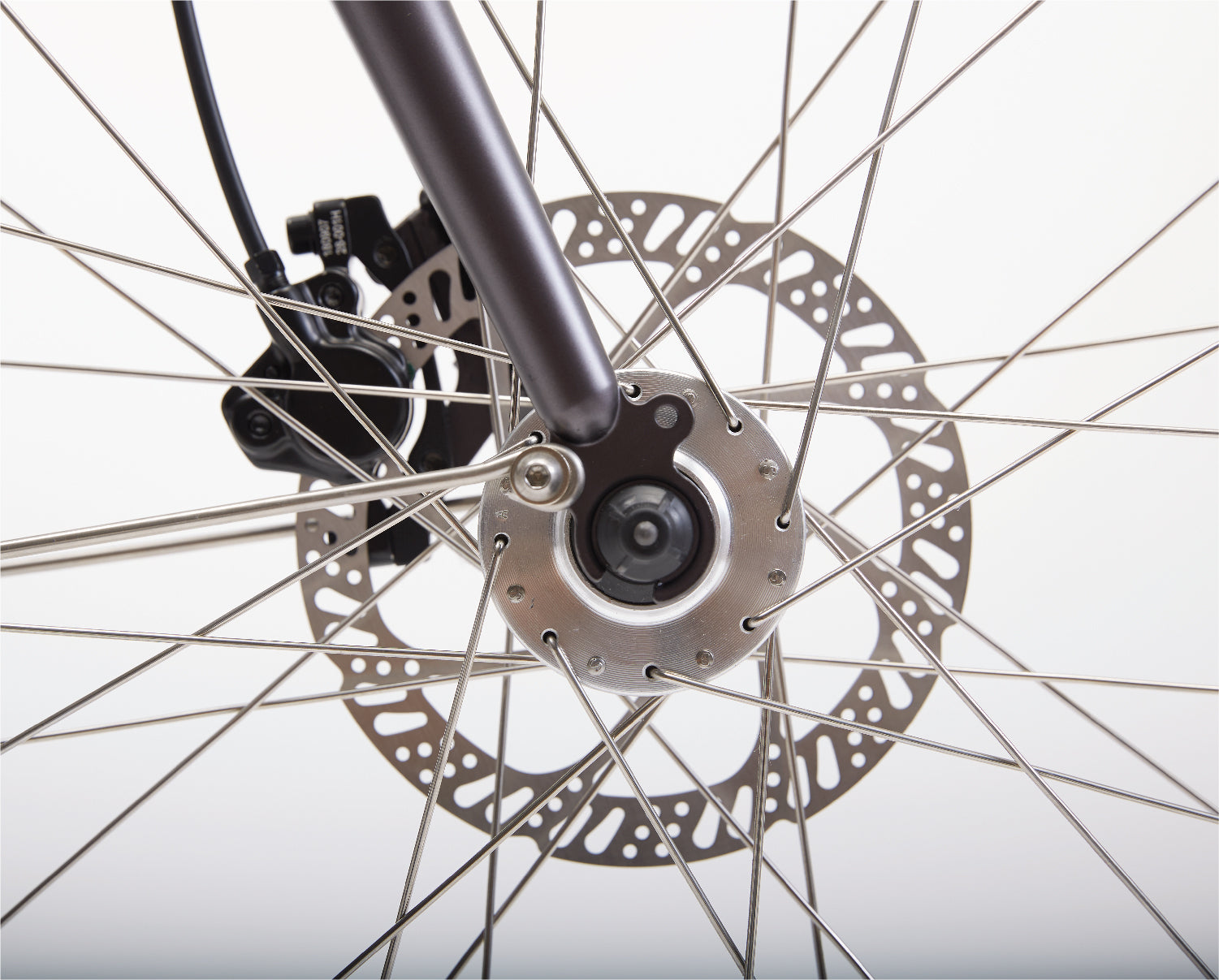 In The Details - Hydraulic Disc Brakes