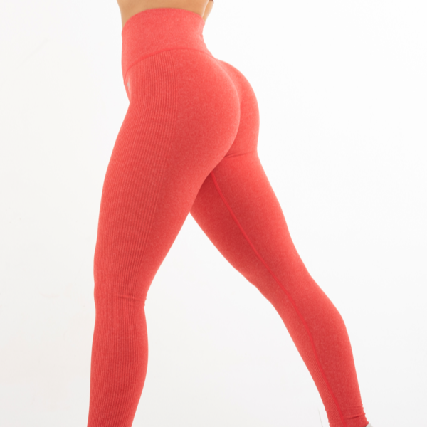 RapidWear - Seamless Mona Tights (Coral)