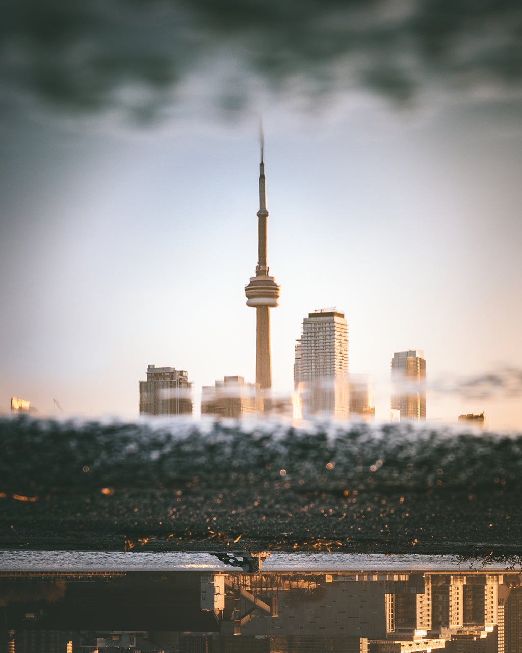 CN Tower Golden Hour Reflection