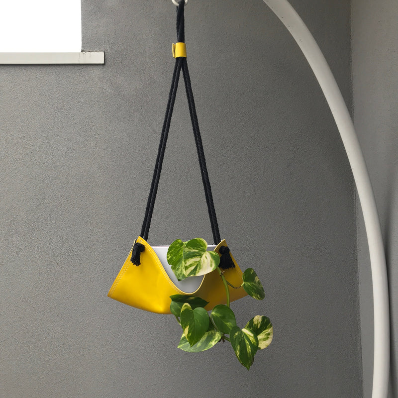 Let's hang plant hangers | Yellow